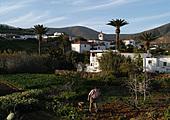 Trek vers la Vega de Rio Palmas