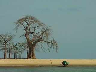 GUINEA BISSEAU