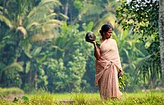 Découverte combinée de l\'Inde du sud, Ceylan et les Maldives