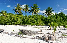 Escapade Robinson : Tahiti - Maupiti - Taha\'a - Bora Bora - Moorea