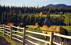 La grande virée des lodges et des ranchs