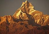 Trek de Deurali (2100 m) à Landruk (1750 m)
